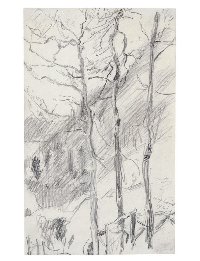 Drei Bäume vor bewaldetem Berghang, 1921