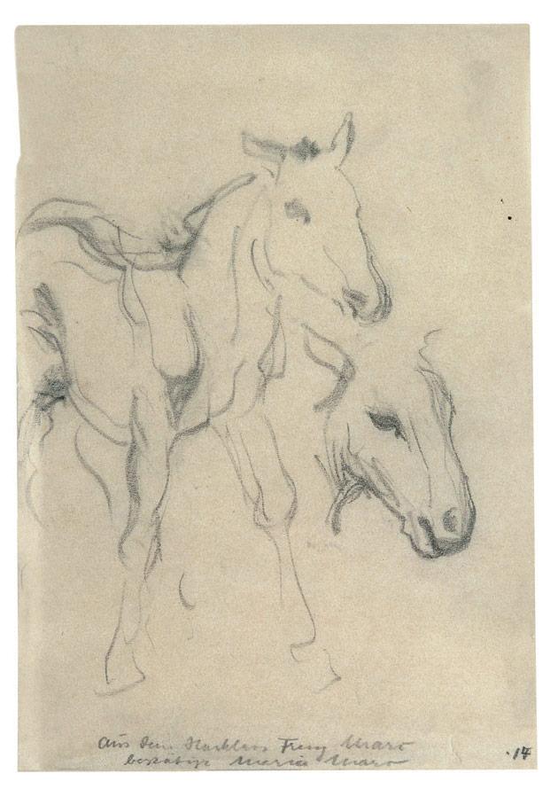 Fohlen, 1909